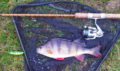 Early Season Catches – Send in your pictures